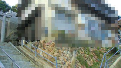 f:id:kabutoyama-tigers:20131116002653j:image