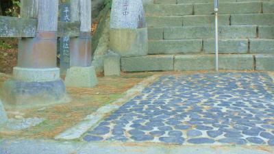 f:id:kabutoyama-tigers:20131116012147j:image