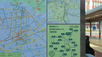f:id:kabutoyama-tigers:20131116014254j:image