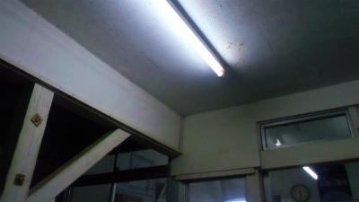 f:id:kabutoyama-tigers:20131116021016j:image