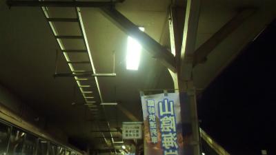 f:id:kabutoyama-tigers:20131116032405j:image