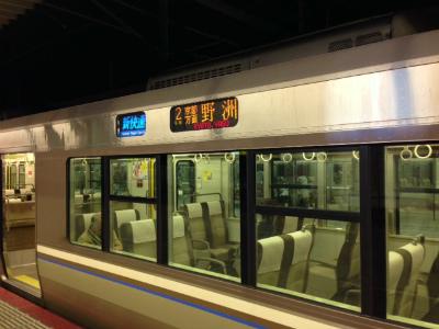 f:id:kabutoyama-tigers:20131116113641j:image
