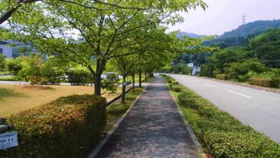 f:id:kabutoyama-tigers:20131118133709j:image