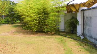 f:id:kabutoyama-tigers:20131123024621j:image