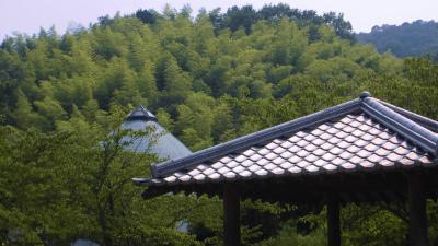 f:id:kabutoyama-tigers:20131123025928j:image