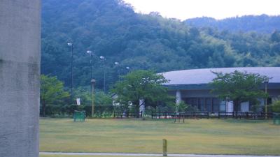f:id:kabutoyama-tigers:20131123033102j:image