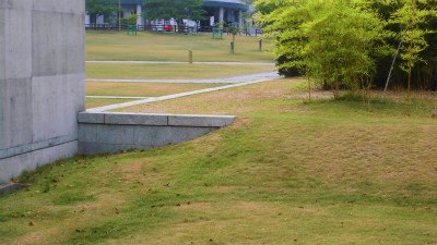 f:id:kabutoyama-tigers:20131123033104j:image