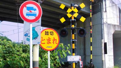 f:id:kabutoyama-tigers:20131123034804j:image
