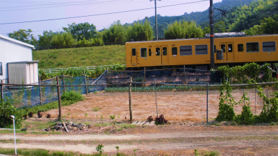 f:id:kabutoyama-tigers:20131123035233j:image