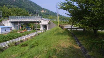 f:id:kabutoyama-tigers:20131123035415j:image