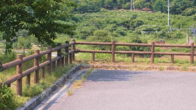 f:id:kabutoyama-tigers:20131123035645j:image
