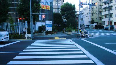 f:id:kabutoyama-tigers:20131214015709j:image