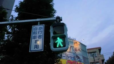 f:id:kabutoyama-tigers:20131214023317j:image
