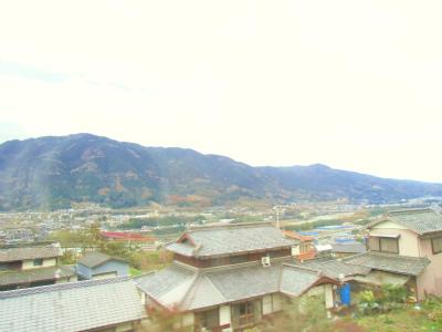 f:id:kabutoyama-tigers:20131220073815j:image