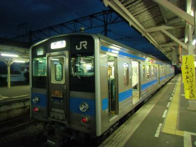 f:id:kabutoyama-tigers:20131221100534j:image