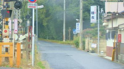 f:id:kabutoyama-tigers:20140105073816j:image