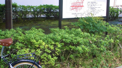 f:id:kabutoyama-tigers:20140123205256j:image