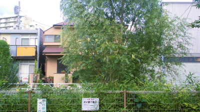f:id:kabutoyama-tigers:20140123205500j:image