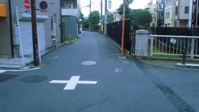 f:id:kabutoyama-tigers:20140125011022j:image