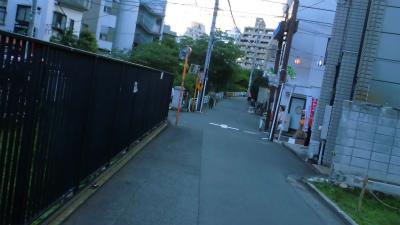 f:id:kabutoyama-tigers:20140125011911j:image