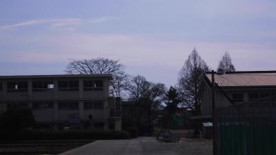 f:id:kabutoyama-tigers:20140126211013j:image