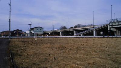 f:id:kabutoyama-tigers:20140126211226j:image