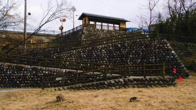 f:id:kabutoyama-tigers:20140126211608j:image