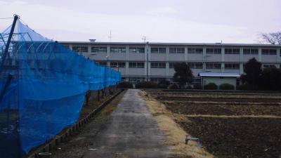 f:id:kabutoyama-tigers:20140126212006j:image