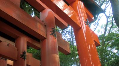 f:id:kabutoyama-tigers:20140203234731j:image