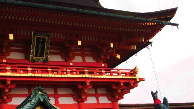 f:id:kabutoyama-tigers:20140204032053j:image