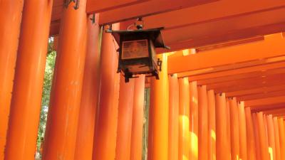 f:id:kabutoyama-tigers:20140204035316j:image