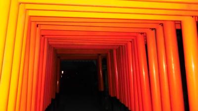 f:id:kabutoyama-tigers:20140208050914j:image