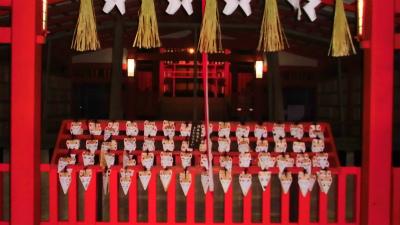 f:id:kabutoyama-tigers:20140208051356j:image