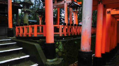 f:id:kabutoyama-tigers:20140210065858j:image