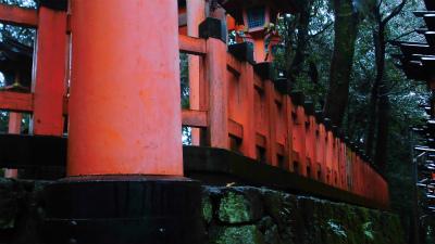 f:id:kabutoyama-tigers:20140210071220j:image