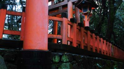 f:id:kabutoyama-tigers:20140210074756j:image