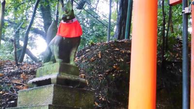 f:id:kabutoyama-tigers:20140210082149j:image