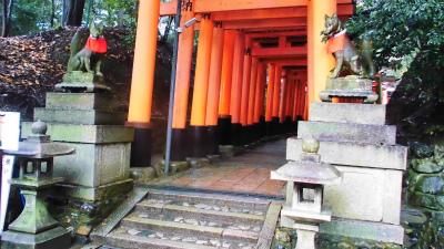 f:id:kabutoyama-tigers:20140210082229j:image