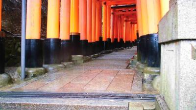 f:id:kabutoyama-tigers:20140210083313j:image