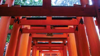 f:id:kabutoyama-tigers:20140210083417j:image