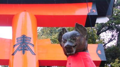 f:id:kabutoyama-tigers:20140210163306j:image