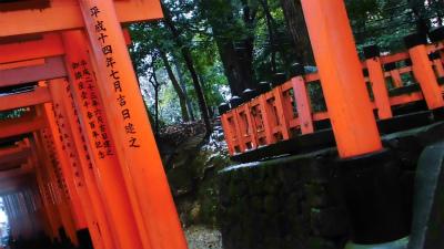 f:id:kabutoyama-tigers:20140211094857j:image