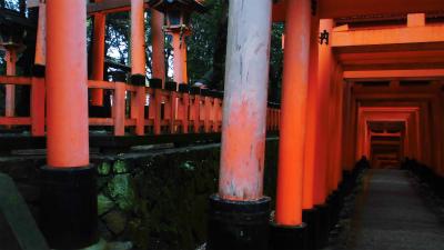 f:id:kabutoyama-tigers:20140211095051j:image