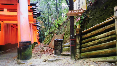 f:id:kabutoyama-tigers:20140211104626j:image