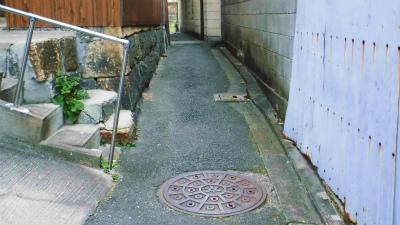 f:id:kabutoyama-tigers:20140213104612j:image