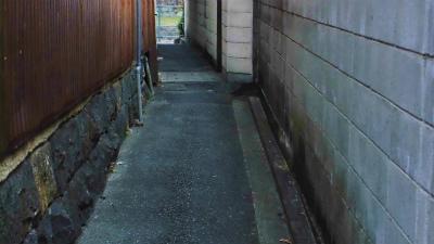 f:id:kabutoyama-tigers:20140213122804j:image