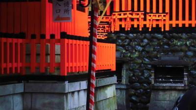 f:id:kabutoyama-tigers:20140214134302j:image