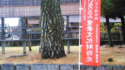 f:id:kabutoyama-tigers:20140216120217j:image