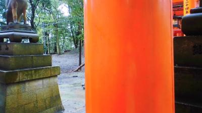 f:id:kabutoyama-tigers:20140216165619j:image