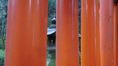 f:id:kabutoyama-tigers:20140216165755j:image
